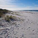 Denison beach, Tasmania by jayview