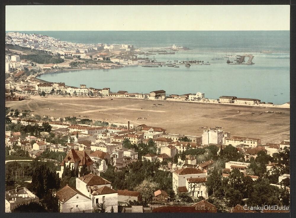 General view from Mustapha 2 - Algiers Algeria - 1899 by CrankyOldDude