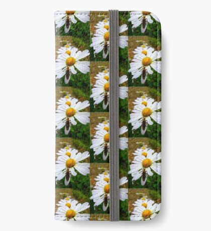 Marguerite Daisies and a Margined Leatherwing  iPhone Wallet