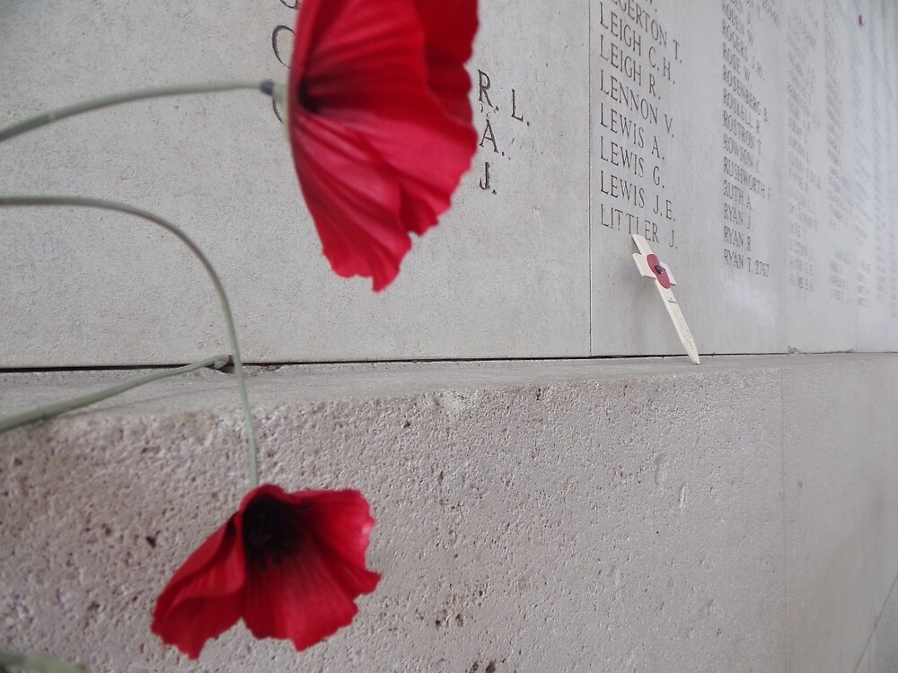 Poppy of Rememberance by hstanley9