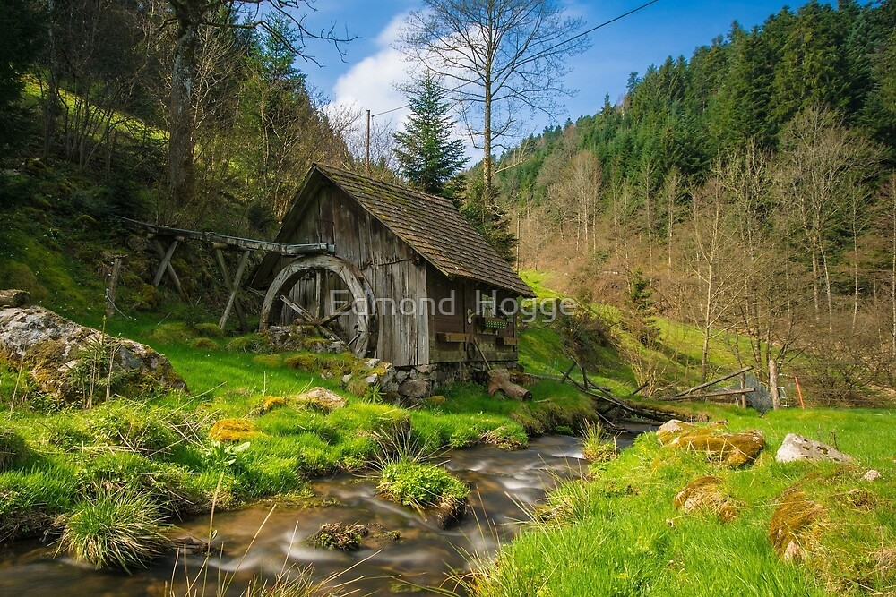 Old Mill by Edmond  Hogge