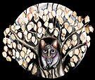 Possum tree by Jenny Wood