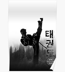 Taekwondo Korean High Kick Poster