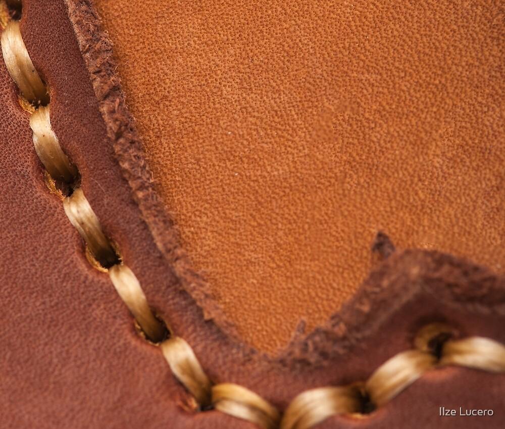 Leather Texture by Ilze Lucero