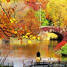 Autumn Paradise, Central Park - NYC by Alberto  DeJesus