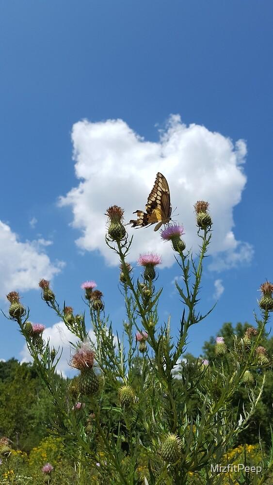 Butterfly Garden by MizfitPeep