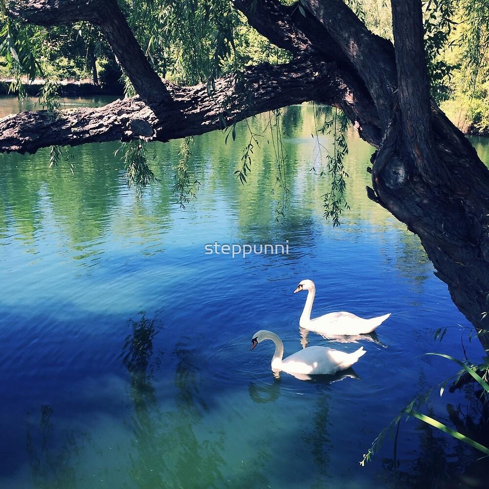 Swan Lake by steppunni