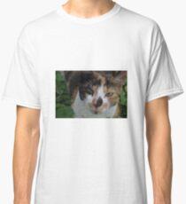 Sweet calico cat Classic T-Shirt