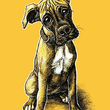 Boxer Puppy by buggybear