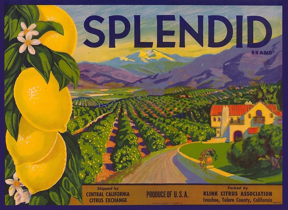 Splendid Citrus Label - California by texassongdog
