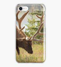 Elk at the River iPhone Case/Skin