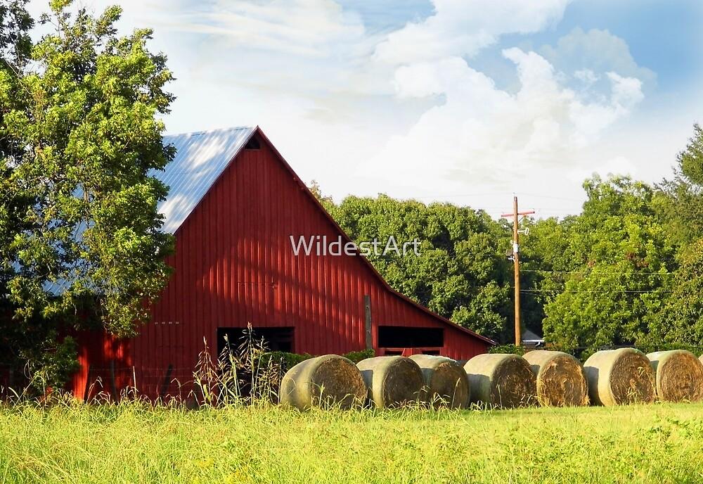 The Red Hay Barn by WildestArt