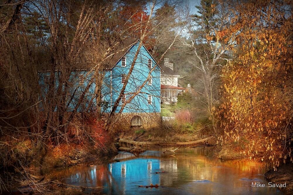 Mill - Walnford, NJ - Walnford Mill by Michael Savad