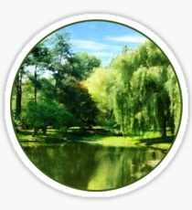 Willow By the Lake Sticker