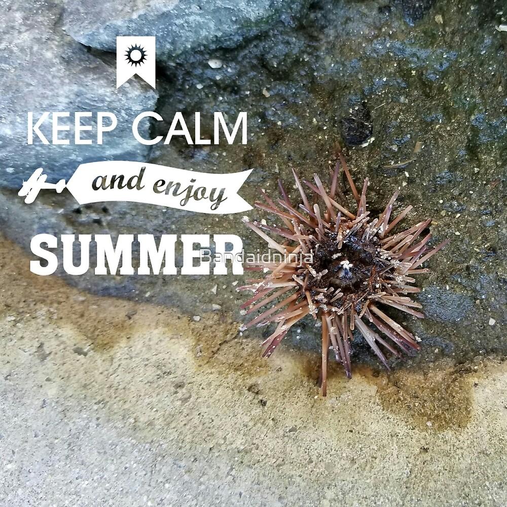 urchin calm by Bandaidninja