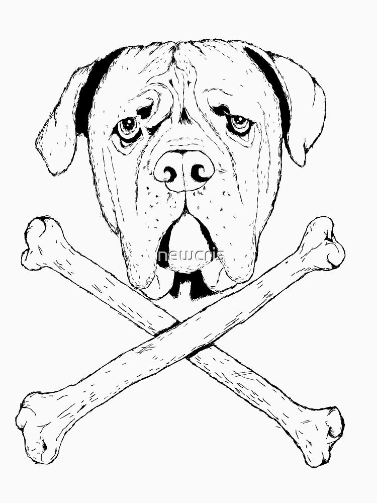 pirate dog by newcris