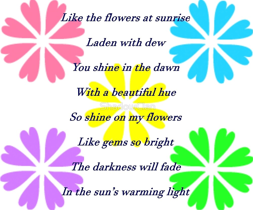 Shadow Clan Flowers in the Sun by ShadowClan