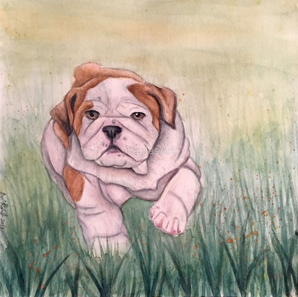 English Bulldog-scroll down to view more of my work by KaylasArt