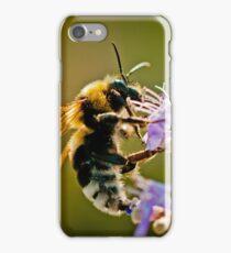 The Honey Maker iPhone Case/Skin