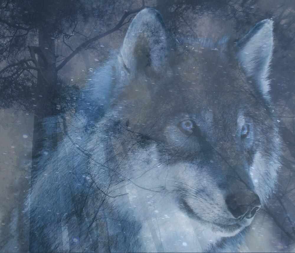 Wolf Spirit by zeldashaffer