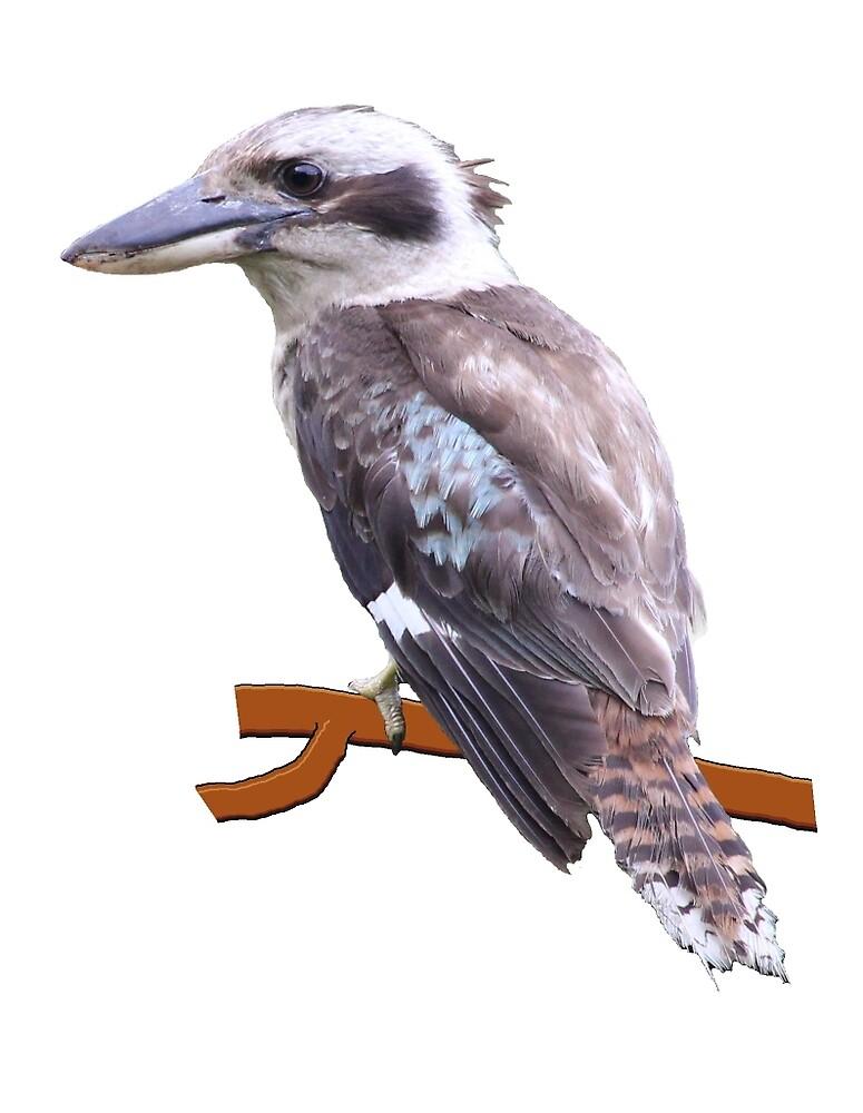 Kookaburra #1 by Frenum