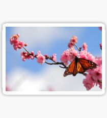 Spring On The Wing Sticker