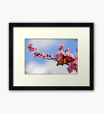 Spring On The Wing Framed Print