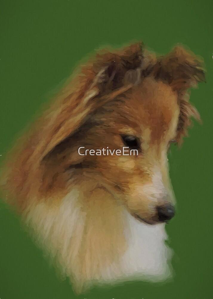Shy Sheltie by CreativeEm