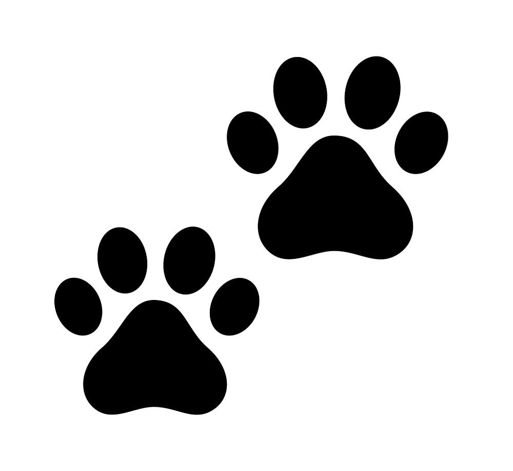 pet footprint by Noemilicus