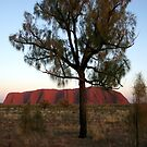 Uluru and the Tree by John Dalkin