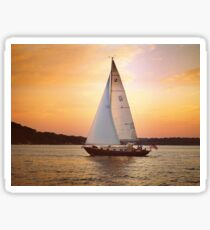 You can't change the direction of the wind, but you can adjust your sails to always reach your destination Sticker