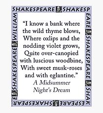 I Know a Bank Where The Wild Thyme Blows - Shakespeare Photographic Print
