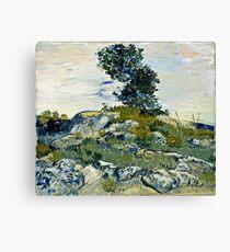 Vincent Van Gogh -  Rocks, 1888  Canvas Print