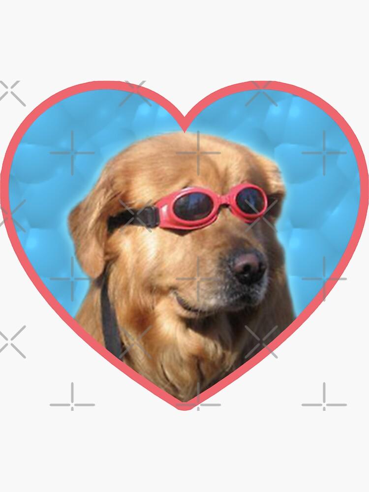 Doggo Stickers: Swimmer Dog by Elisecv