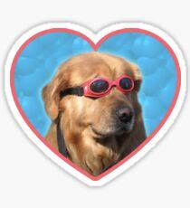 Doggo-Aufkleber: Schwimmer-Hund Sticker