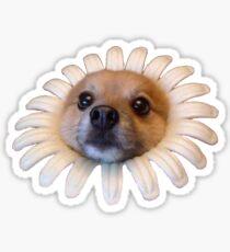 Doggo Aufkleber: Blume Doggo Sticker