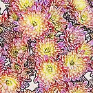 Chrysanthemums Within the Lines by nharveyart