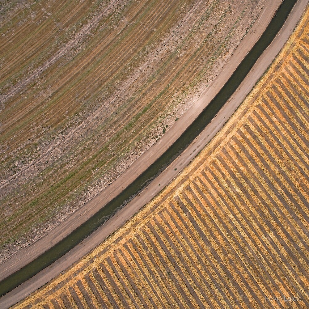 Crop Abstract by Kevin Lajoie