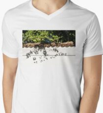 Patterned Sunshine - Ginkgo Shadows on a White Stucco Wall  Mens V-Neck T-Shirt