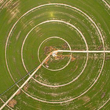 Crop target by KAPgsy