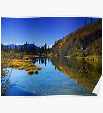 Roadside Pond along Dempster Highway Poster