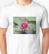 Seerosen Teich  T-Shirt