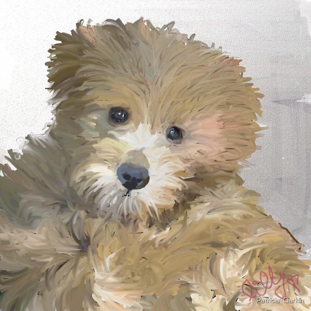 Lilly by Trisha Clarkin