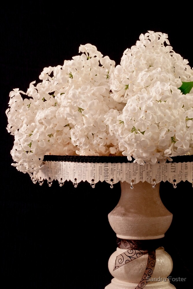 Pristine Lilacs On A Music Pedestal by Sandra Foster