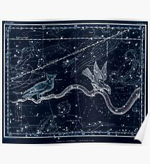 Alexander Jamieson A Celestial Atlas 1822 Plate 27 Astronomy Constellations Inverted Poster