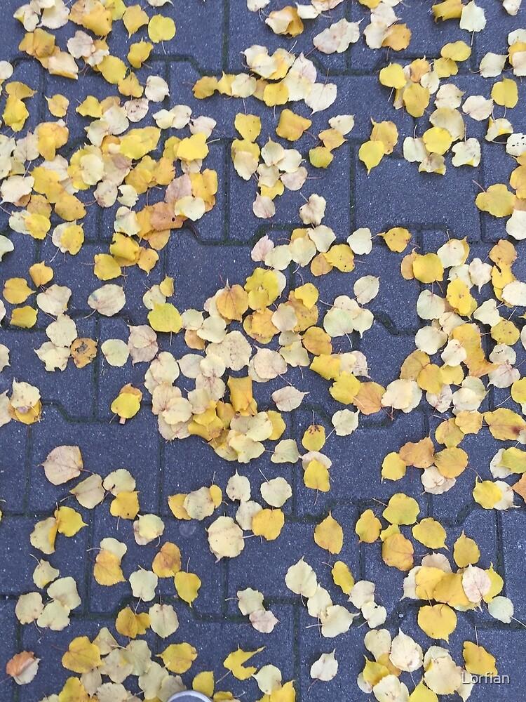 fall linden by Lorfian