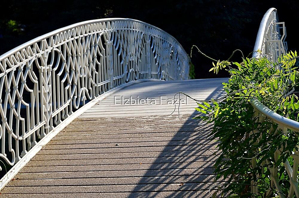 Bridge in Lichtentaler Allee park in Baden-Baden, Germany by Elzbieta Fazel