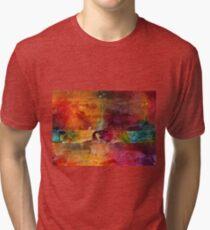 Over 50 Birthday Celebration Tri-blend T-Shirt