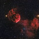 Jellyfish Nebula by Jeff Johnson
