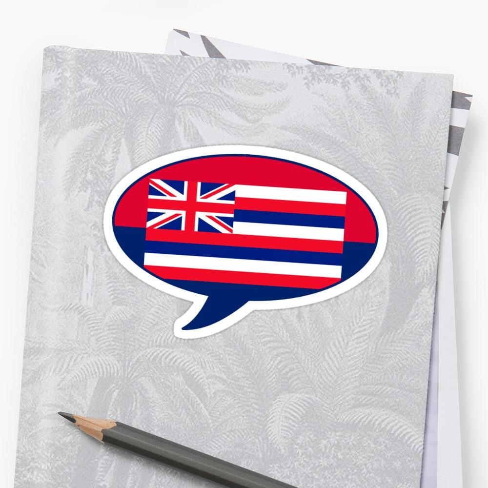 Hawaii State Flag Graphic USA Styling by Garaga